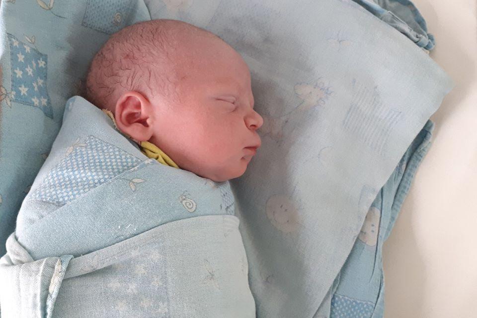В октябре в роддоме № 4 при больнице им. В.В. Виноградова на свет появился 771 малыш