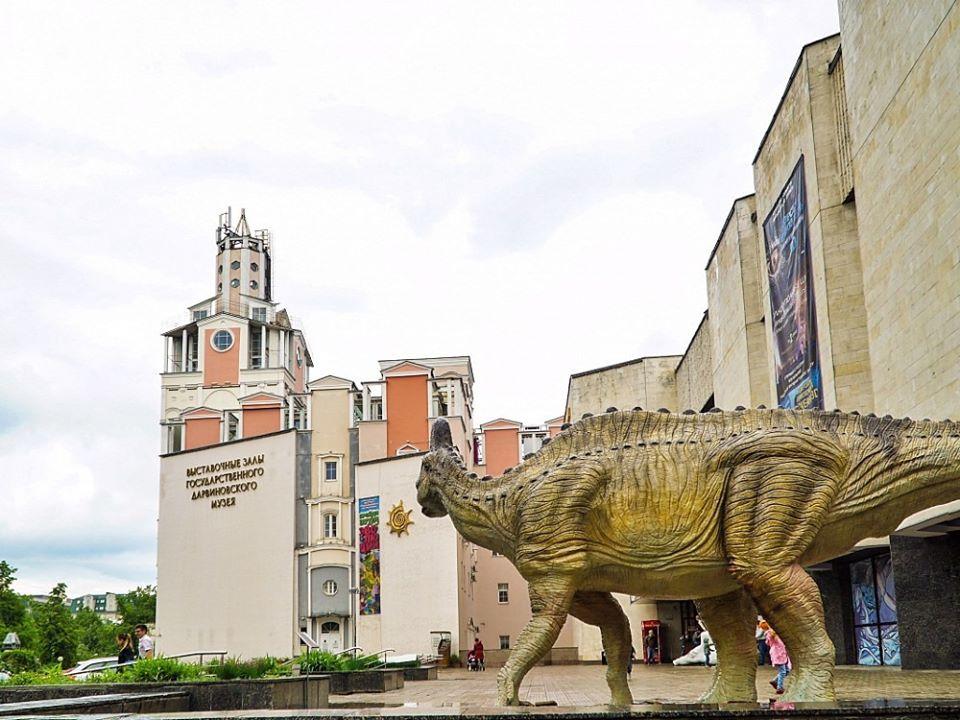 Дарвиновский музей получил благодарность за участие в городском конкурсе-путешествии «Большая Регата»